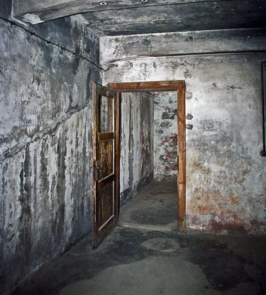 Seconde guerre mondiale infos et debats topik histoire for Auschwitz chambre a gaz